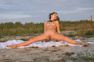 Imagen etiquetada con: Skinny, Brunette, MET Art, Ralina A, Ventus, Flat chested, Flexible, Nature, Pussy, Small Tits